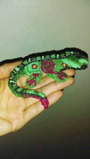 Reptile Indoors  Green Color Close-up Colors Of Life Huichol Huicholart