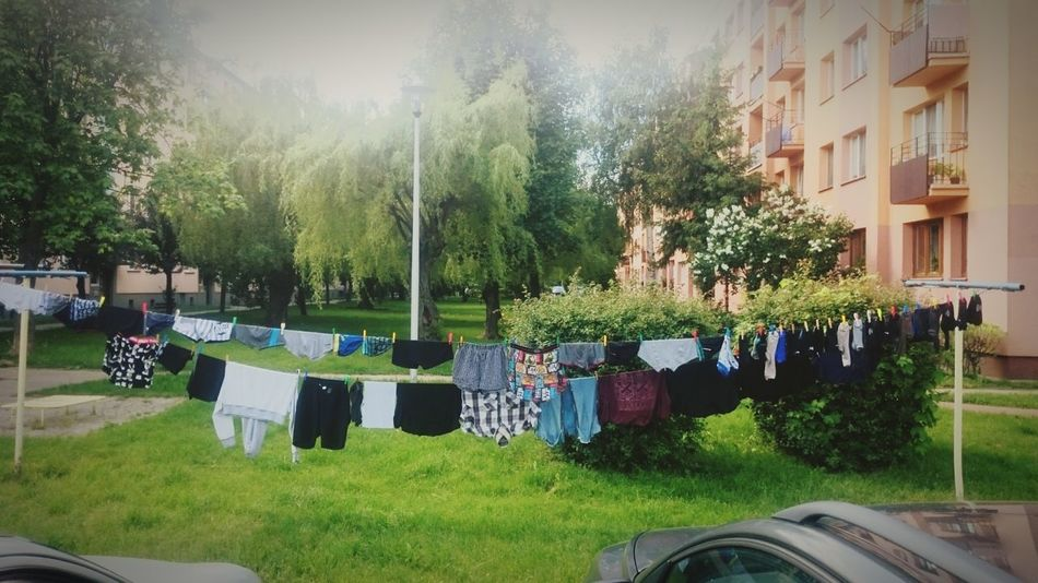 Day 93 of 365. Im at my grandmas when i get to see something Unusual . Laundry that was Hung next to Parking . Tree Day Outdoors No People Grass Nature