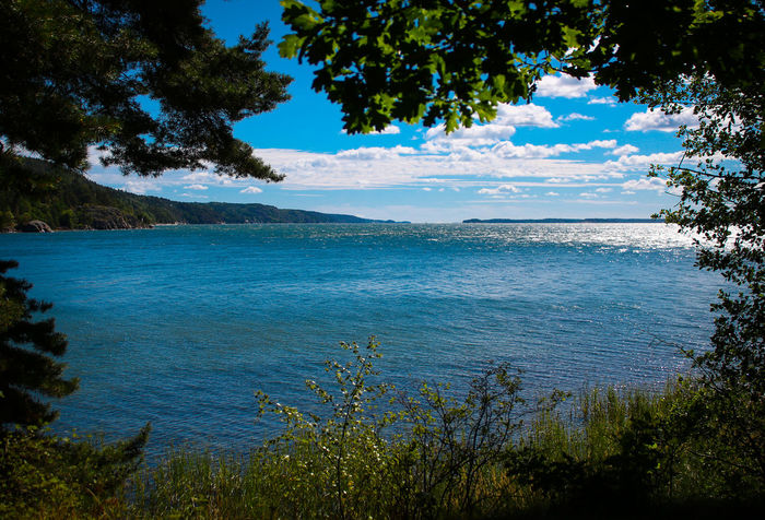 Beobachten Blue Sky Frame Hideaway Idylle Idyllic Idyllic Scenery Lake View Lakebeauty Lakeside Sweden Nature Sweden-landscape Versteck