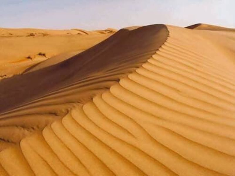 Sand Dune Sand Landscape Desert Arid Climate Nature Scenics Day Siwa Oasis Travel People History Siwa Desert Safari Outdoors Travel Destinations Beauty In Nature Sky