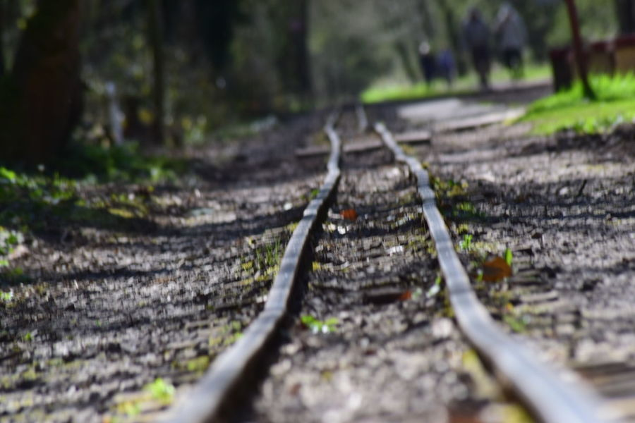 Showing Imperfection Taking Photos My Own Photography Check This Out NIKON D5300 Naturelovers Nature Depth Of Field Railway Track Narrow Gauge Railway Life Though The Lens End Of The Line