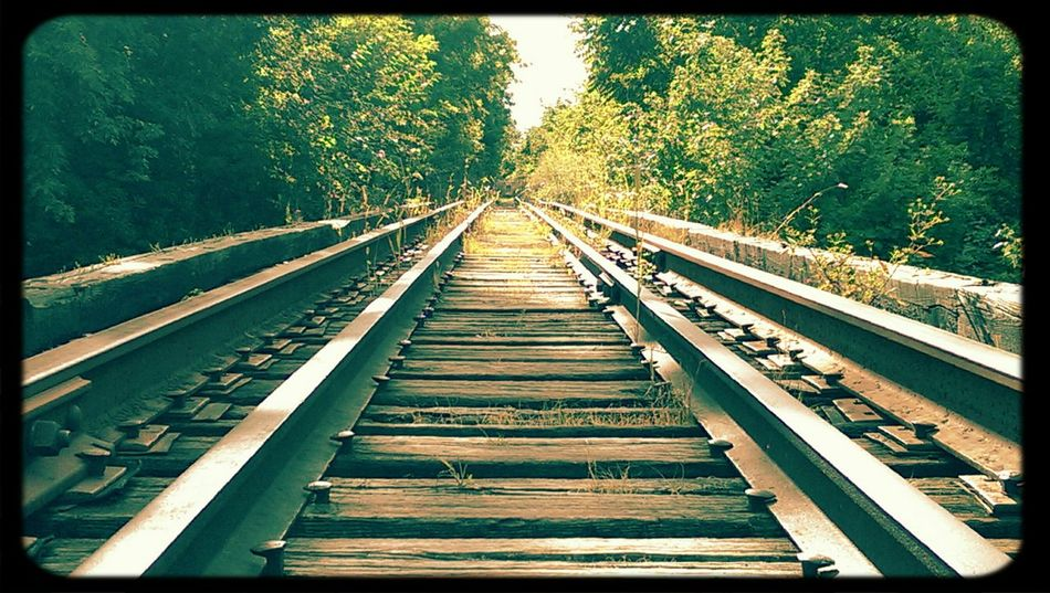 The trestle First Eyeem Photo