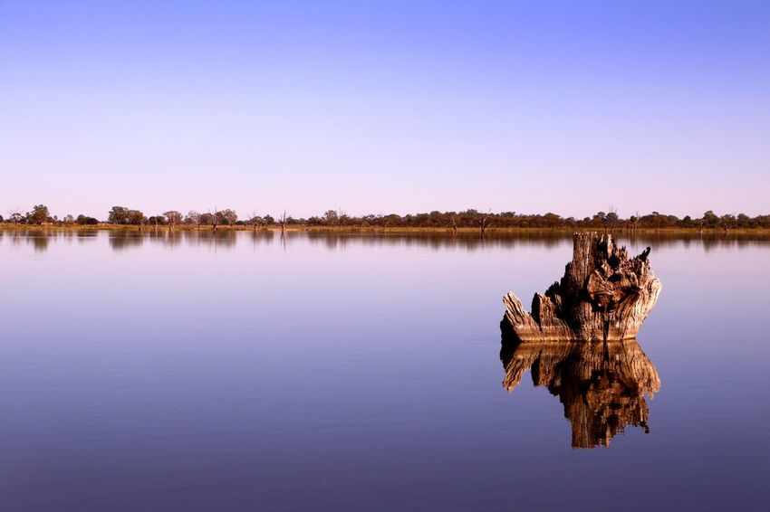 A calmness presides over Lake Bonney at Barmera in the riverland of South Australia Australian Landscape Calm Travel Travel Photography Beauty In Nature Clear Sky Day Lake Lake Bonney Nature No People Outdoors Reflection Reflections In The Water Scenics Sky Standing Water Still Water Sunset Tourist Destination Tranquil Scene Tranquility Travel Destination Water