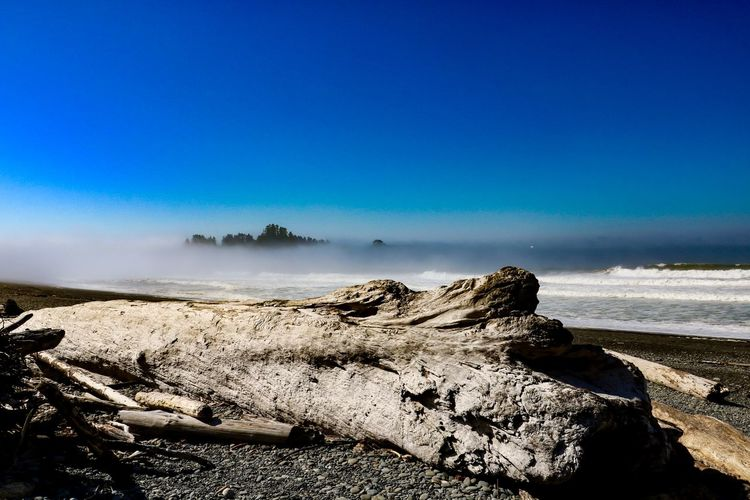 Rialto Beach Olympic National Park Sky Scenics - Nature Tranquil Scene Beauty In Nature Tranquility Nature Land Day No People Blue Sea Driftwood