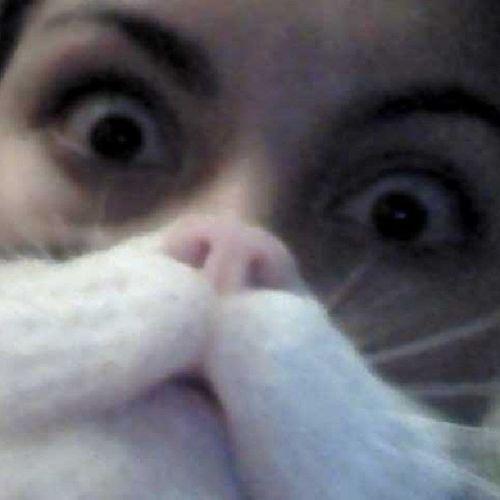 Hahaha :') Catbeard Nofilter