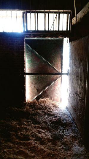 Sunlight Window Architecture Built Structure Run-down