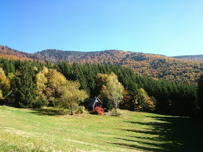Trip to Lysa hora Beskydy Mountains Landscape Beauty Nature Autumn Forest Sunny Day Cottage Trip