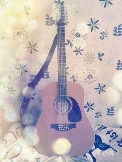 Guitar 12 Strings Music Gitarre