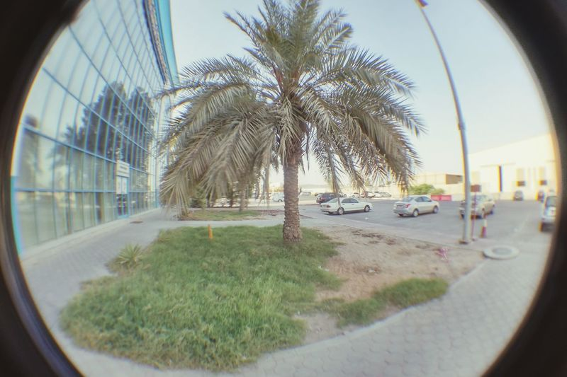 From my Fish Eye Lens People Watching Checking Out EyeEm Best Shots Sandstorm Happy People Hello World Stand Out From The Crowd Nikon D3200 Faces Of EyeEm Ordering Room Service