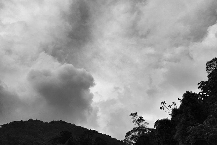 Petrópolis Rio De Janeiro Blackandwhite Black And White Travel IPhoneography Iphone 6 Vscocam VSCO