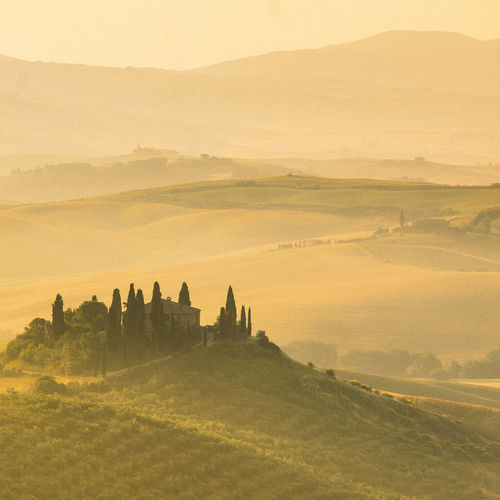 Sunrise on Tuscany hill, Italy Landscape Environment Landscape Scenics - Nature Beauty In Nature Tranquil Scene Tranquility Sky Mountain Nature Non-urban Scene Land No People Idyllic Tree Field Plant Sunset Remote Outdoors Rural Scene Rolling Landscape Sunrise Golden Hour