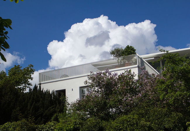 Tree Architecture Cloud - Sky Day No People Built Structure Outdoors Building Exterior Sky Nature Balcony Roof Terrace