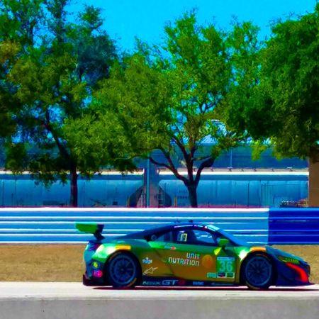 12 hrs of Sebring Tree Car City Auto Racing Racecar Motor Racing Track Sports Race Motocross