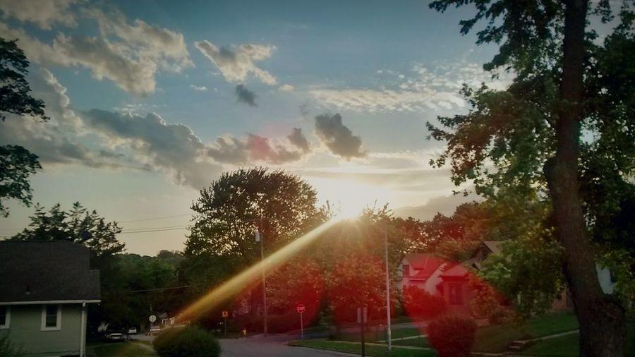 Rays of light;
