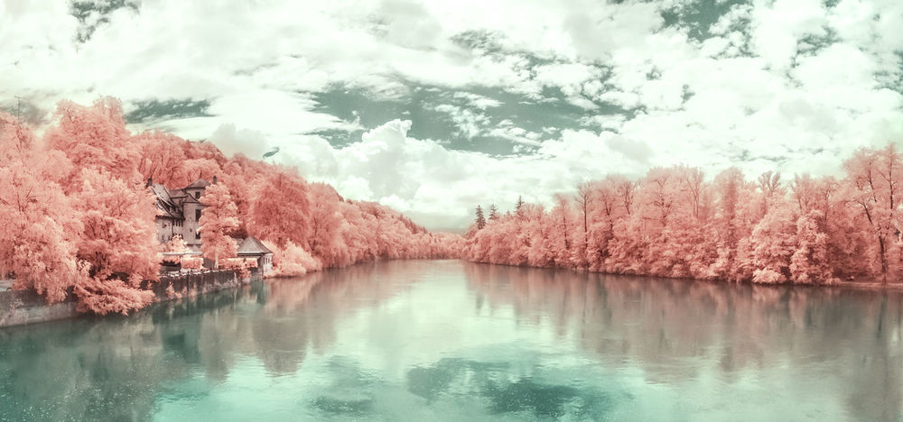 Sorry you all had to wait so long ... I recently converted a camera to infrared, so here's some colorful infrared photographs, you will definitely see more of that on my profile in the next weeks ;) Stay tuned | 720nm Beauty In Nature Best Shots EyeEm Cloud Cloud - Sky Color Swap Day EyeEm Best Shots EyeEm Best Shots - Nature EyeEm Nature Lover Idyllic Infrared Infrared Photography Lake Landscape Nature Reflection Reflection River Tranquil Scene Tranquility Tree Water Weather