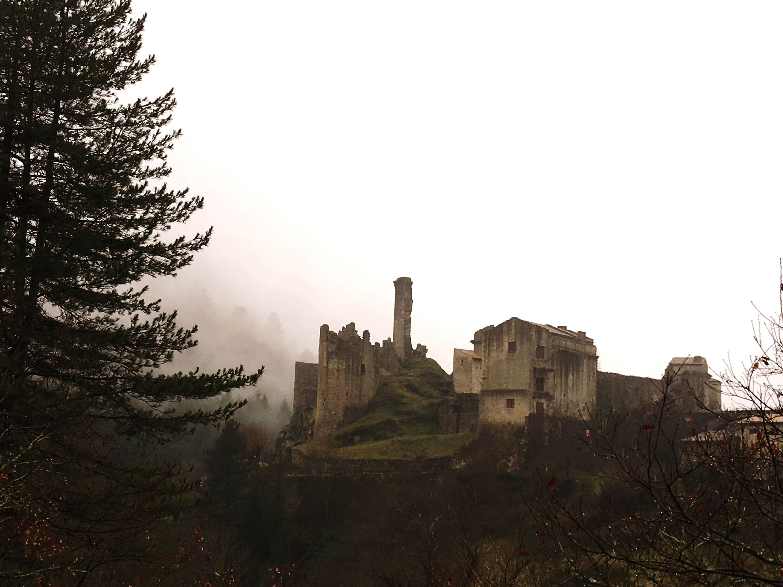 architecture, building exterior, built structure, clear sky, copy space, tree, history, sky, day, building, outdoors, no people, city, foggy, tower, travel destinations, tall - high, nature, old ruin