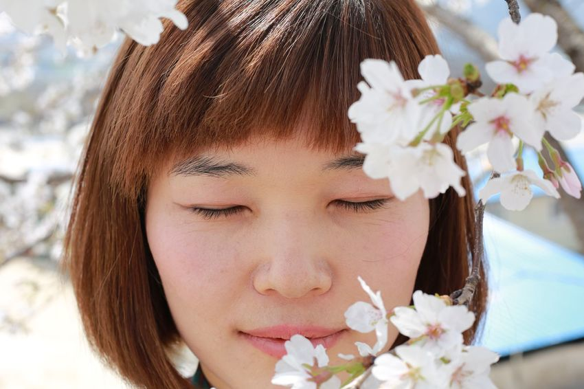 Cherry Blossoms EyeEm Nature Lover EyeEmNewHere Taking Photos Beauty In Nature Blooming Enjoying Life Face Flower Flower Head Focus On Foreground Fragility Freshness Headshot Human Body Part Human Face Leisure Activity Lifestyles Nature One Person Outdoors Plant Portrait Real People Women