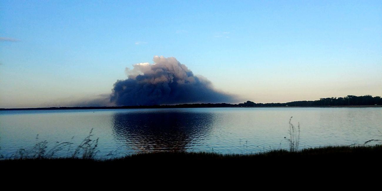 Forest Fire Steam Burnt Ash