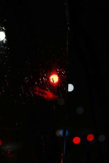 Close-up of illuminated car window