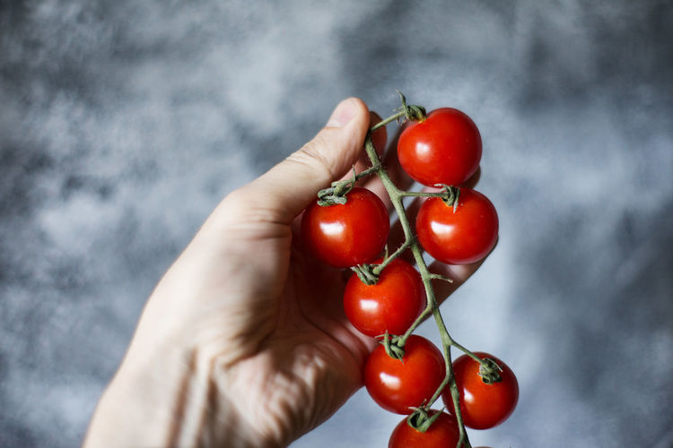 Midsection of person holding red tomatoes