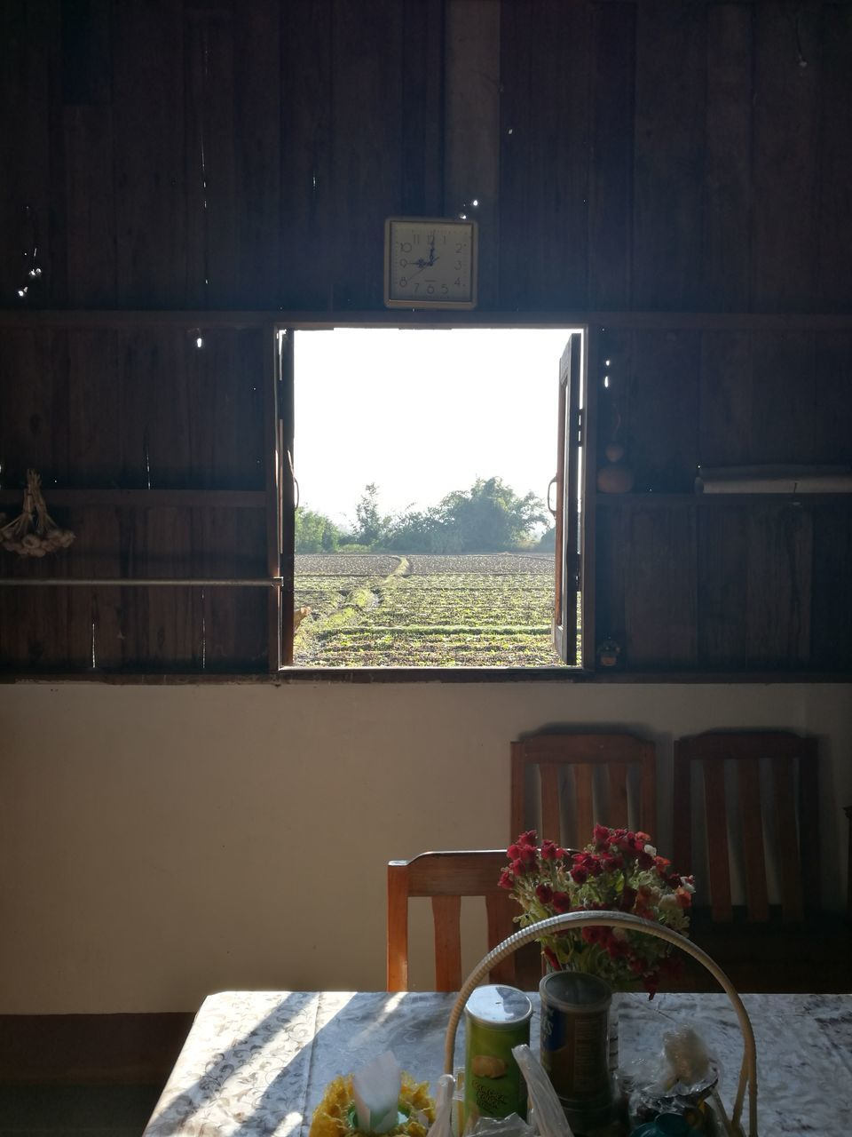 window, indoors, table, day, no people, wood - material, home interior, tree, built structure, nature