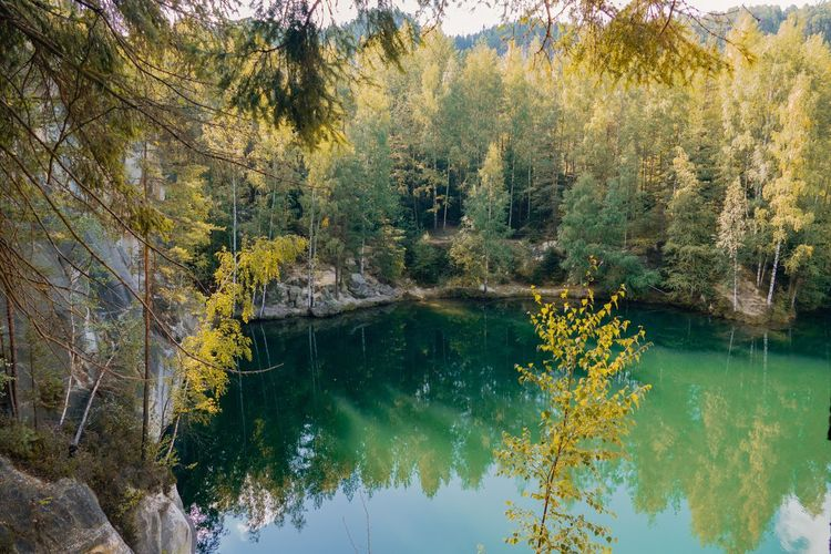 Quarry lake Leica Leicacamera Trynidada Adršpach Autumn Tree Plant Water Beauty In Nature Tranquility Reflection Growth No People Day Tranquil Scene Nature Lake Green Color Scenics - Nature Branch Outdoors Pine Tree Non-urban Scene Forest Waterfront