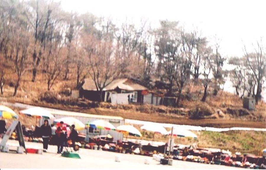 First Eyeem Photo Korea Culture Outdoors Day Korean Market Traditional Markets