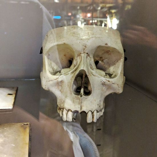 Antrieb Bone  Spooky Human Skull Business Finance And Industry Built Structure Architecture Outdoors Day Close-up People