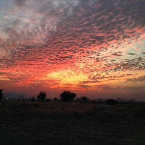 Atmosphere Nature Sunset Red Orange Colors Sky Evening Clouds Cloudy Beautiful Amazing Winter December Noedit Climate 1000thingstodoinsurat Atmo Nature Sky Skies Cloud Outdoors Sunlight Skyscap skyandcloud ilovegujarat