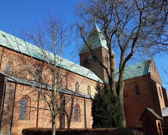 Architecture Built Structure Tree Building Exterior Low Angle View Sky No People City Outdoors Growth Day St. Bendt's Church Sankt Bendts Kirke St. Bendts Kirke Church Kirke Kirker Blue Sky Bare Tree Religion Architecture Medieval Medieval Church -at Saint Bendt's Church in Ringsted, Denmark