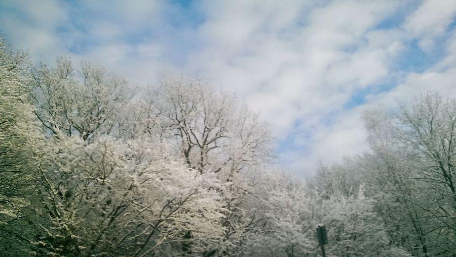 Goodbye Snow
