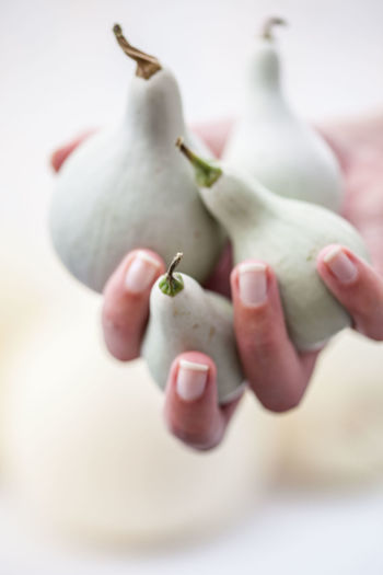 Close-up of hand holding squashes against white background
