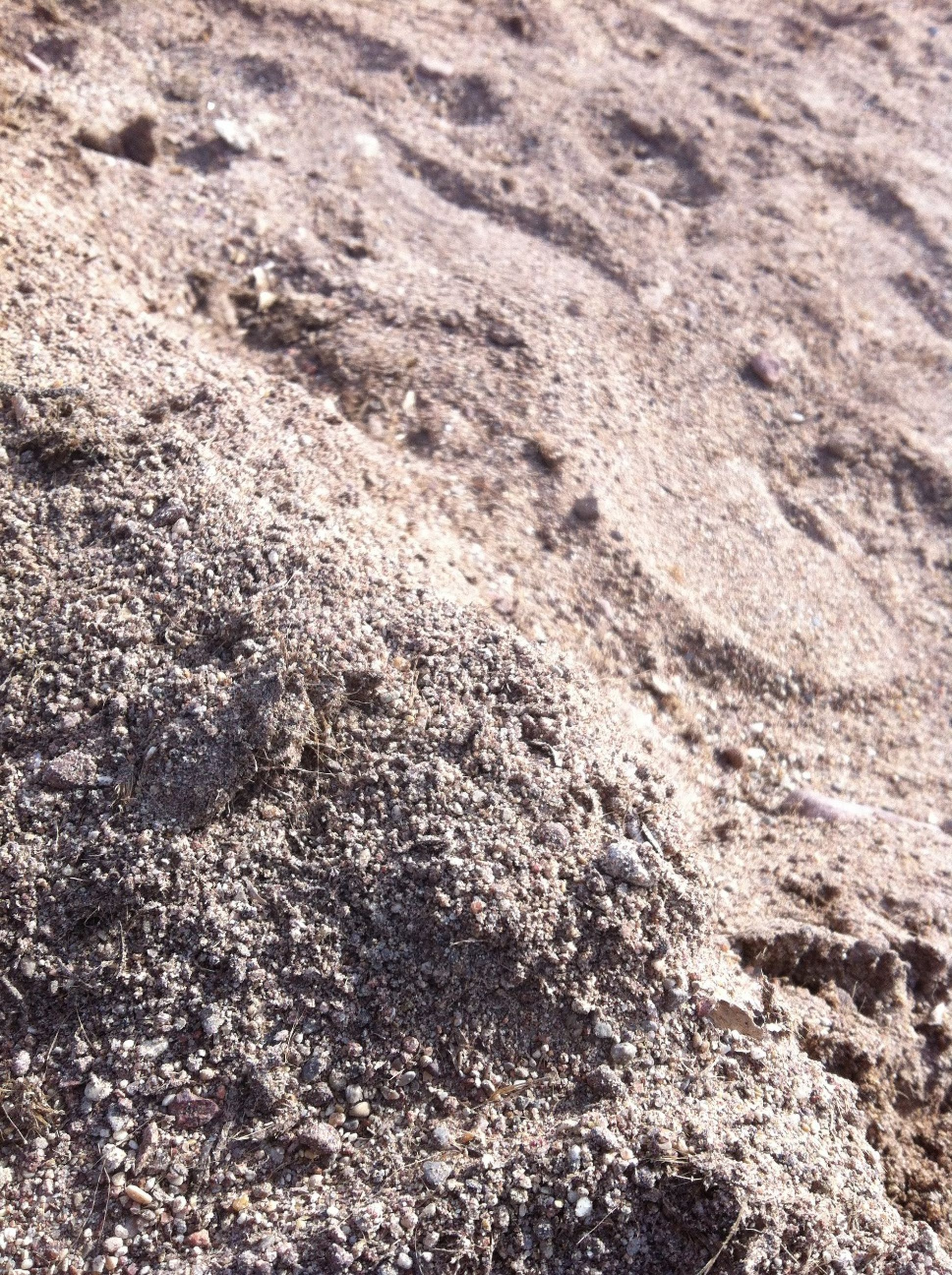 full frame, textured, backgrounds, rough, high angle view, pattern, close-up, nature, no people, day, outdoors, natural pattern, detail, tranquility, sand, cracked, sunlight, abstract, brown, beauty in nature