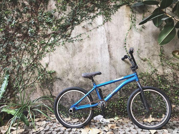 Bicycle Land