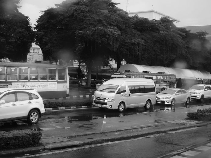 Cars on wet street in city