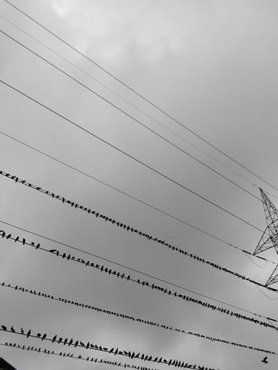Architecture Building Exterior Built Structure Cable Cloud - Sky Connection Day Electricity  Fuel And Power Generation In A Row Low Angle View Metal Nature No People Outdoors Pattern Power Line  Power Supply Sky Technology