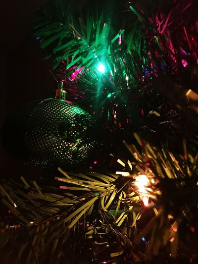 Christmas Celebration Christmas Tree Christmas Decoration Night Decoration Tradition Christmas Ornament Christmas Lights Holiday - Event Close-up No People Green Color Illuminated Tree Bauble Indoors