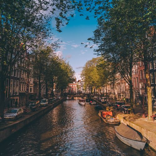 Chasing canals Photography Europe EyeEm Selects EyeEm Best Shots Houses Urban Travel Cityscape Netherlands Holland Amsterdam Tree Architecture Built Structure Building Exterior Nautical Vessel Mode Of Transport Transportation Travel Destinations Day Outdoors City No People Gondola - Traditional Boat