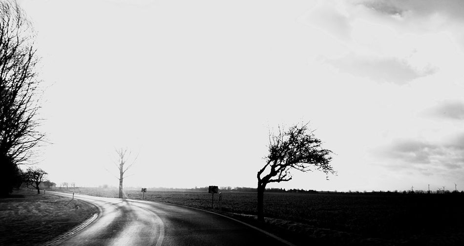 EyeEm Selects EyeEm Best Shots Tree Sky Road Plant The Way Forward Direction Transportation Nature No People Day Environment Outdoors Tranquility Cloud - Sky Beauty In Nature Landscape Copy Space Field Tranquil Scene Non-urban Scene