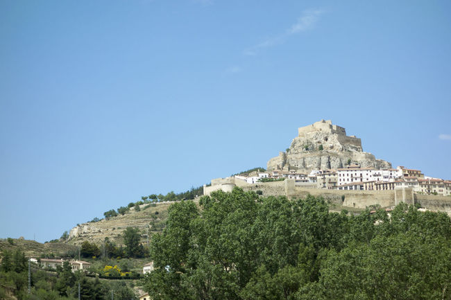 Ancient Civilization Architecture Blue Building Exterior Built Structure Castellón Castle Clear Sky Copy Space Day Green Color Growth History Landscape Maestrat Maestrazgo Morella Mountain Nature No People Outdoors Scenics SPAIN Travel Destinations Tree