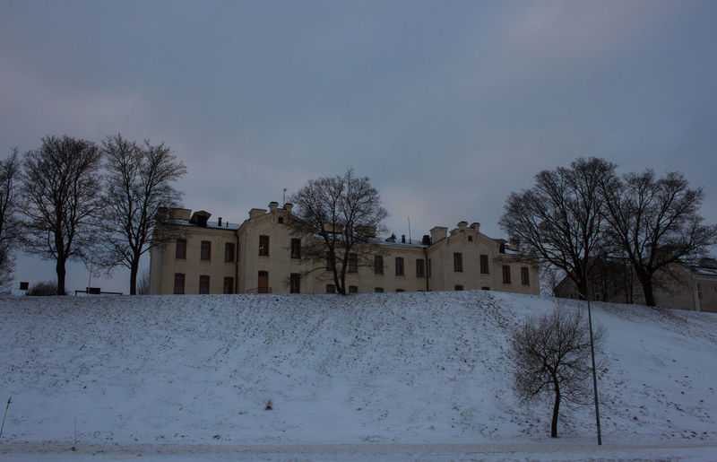 Bare trees against buildings during winter