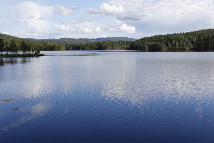 Pure lake and forest, into the wild Pure Beauty In Nature Blue Blue Sky Cloud - Sky Day Idyllic Lake Lake View Lakeside Nature No People Non-urban Scene Outdoors Reflection Remote Scenics - Nature Sky Tranquil Scene Tranquility Tree Water Waterfront Wild Wilderness