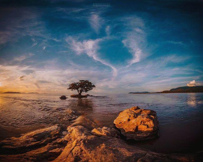 Nature heals negativity EOS8000D Canon Lightroom Photography Instagram Wanderlust EyeEm Selects Water Sea Sunset Beach Blue Wave Sand Rock - Object Sky Landscape Coral Seascape