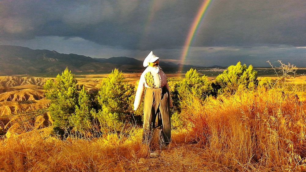 Arco Iris Wheatherpro: Your Perfect Wheather Shot