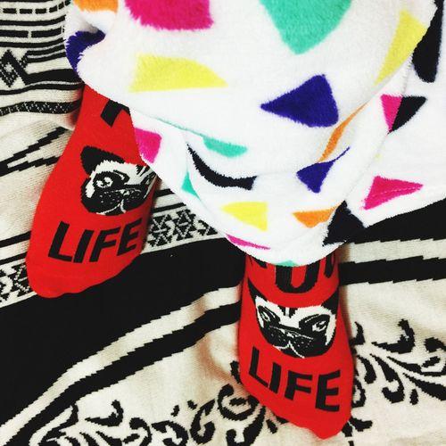 Pug 😍 Pug Pug Life  Dog Socks Lovely