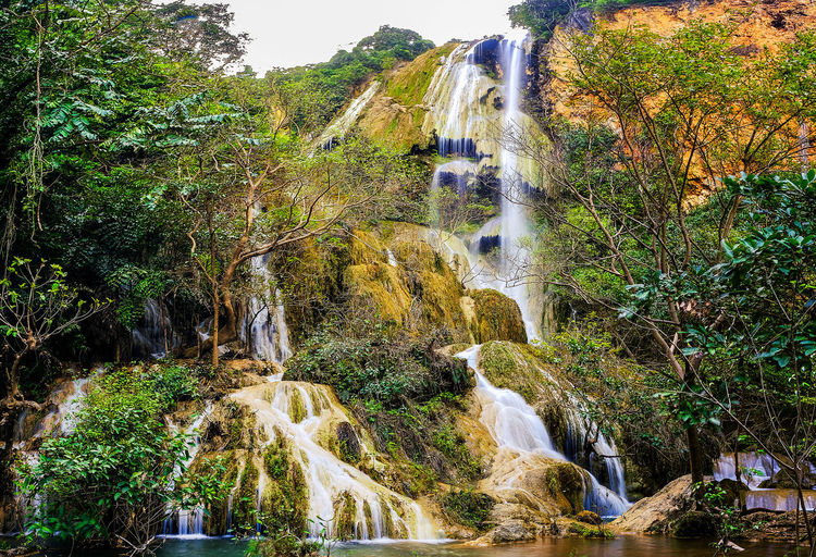 Panoramic view of waterfall in forest