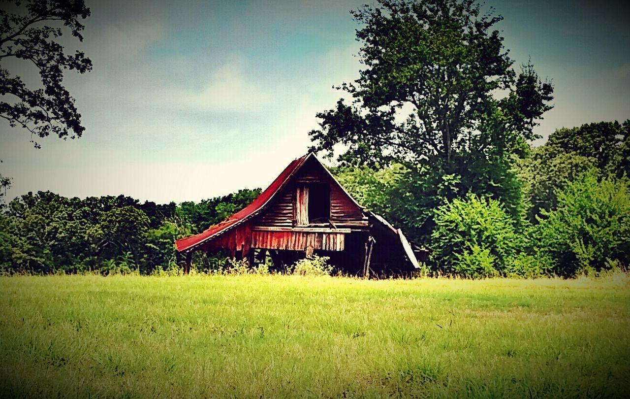tree, grass, house, architecture, built structure, no people, country house, tranquility, field, abandoned, sky, day, growth, building exterior, tranquil scene, landscape, farmhouse, outdoors, scenics, barn, nature, beauty in nature