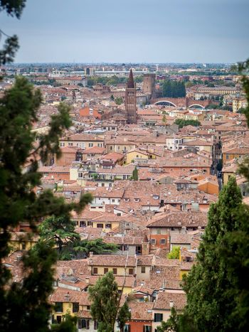 Aerial View Old Town Medieval Travel Italy Italia Italy🇮🇹 Italy❤️ Verona Italy Verona Architecture Building Exterior Built Structure City Building Tree Plant High Angle View Nature Residential District Cityscape Crowd Day Town Crowded Sky Outdoors Sunlight Community TOWNSCAPE EyeEmNewHere