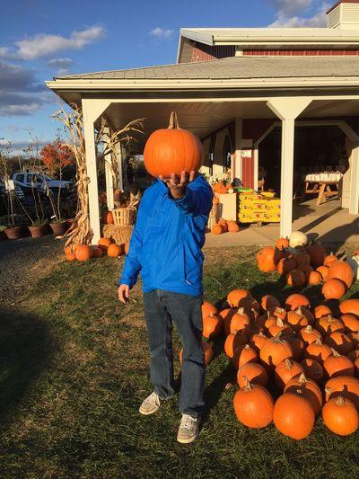 Face Light Day Pumpkin Pumpkin Head Pumpkin Face Autumn Pumpkin Picking That's Me Check This Out