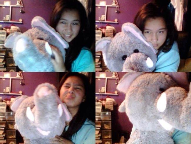 I Love My Elephant